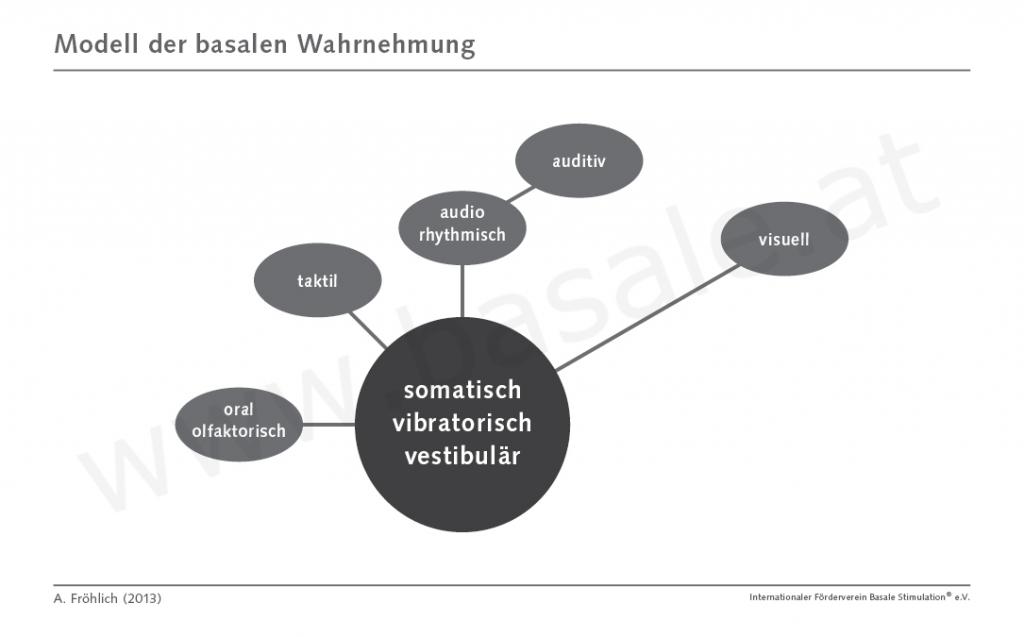 Modell der basalen Wahrnehmung